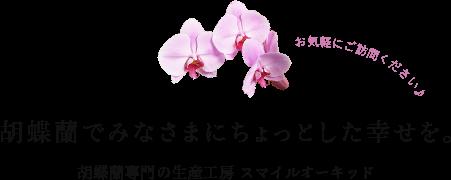 胡蝶蘭でみなさまにちょっとした幸せを。